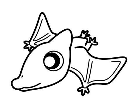 disegni bebe da stare disegno di beb 232 pterodactylus da colorare acolore