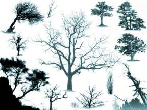 500 useful tree photoshop brushes photoshop free brushes