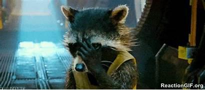 Rocket Raccoon Galaxy Guardians Racoon Gifs Turbo