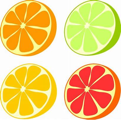Citrus Adderall Comedown Reply Leave Cancel Nootropic