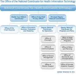 Technology Health Care Organizational Structure Chart