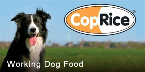 coprice working dog food beefkg