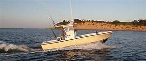 Private Cape Cod Whale Watch and Fishing Charters   Down ...