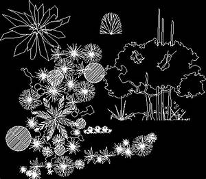 Trees and House Plants Silhouette 2D DWG Block for AutoCAD