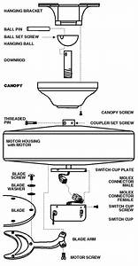The Diagram Below Describes The Basic Assembly Of A Ceiling Fan And Names Associated With Each