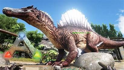 Spinosaurus Ark Evolved Survival Capturando Gran Al