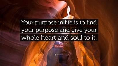 Buddha Purpose Heart Whole Give Soul Quote