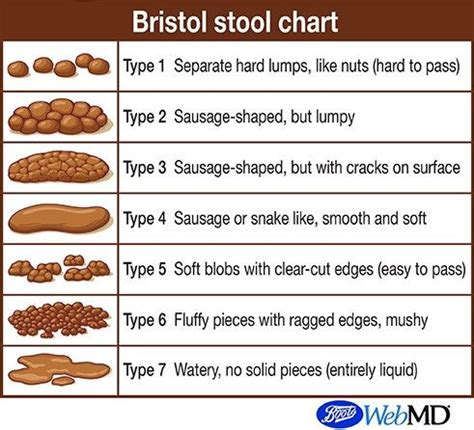Healthy Stool Colors - poo chart what is the bristol stool scale
