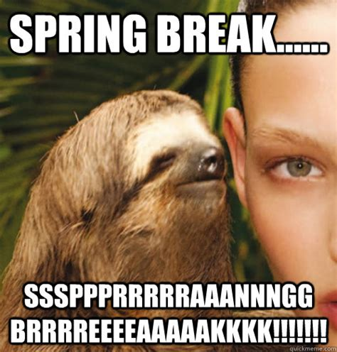 Spring Break Over Meme - spring break sssppprrrrraaannngg brrrreeeeaaaaakkkk whispering sloth quickmeme