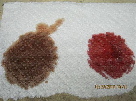 Brown Transmission Fluid