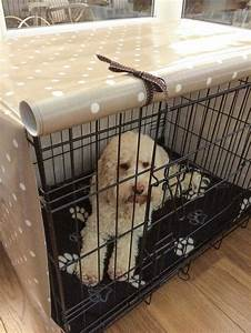 The 25 best medium dog crate ideas on pinterest dog for Dog crates for medium sized dogs