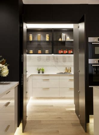 kitchen pantry cabinet ideas  storage solutions