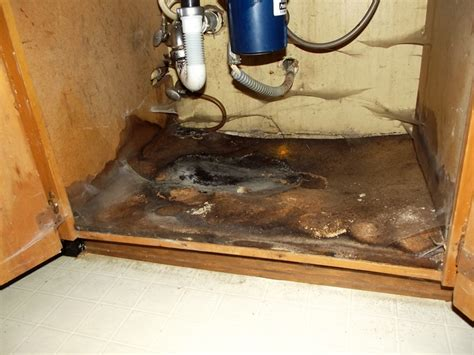 leak under kitchen sink housekeeping issues at what point does one realize there