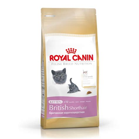 Royal Canin Kitten by Royal Canin Kitten Food Baby Cat For