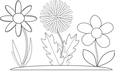 printable flower coloring pages  pics