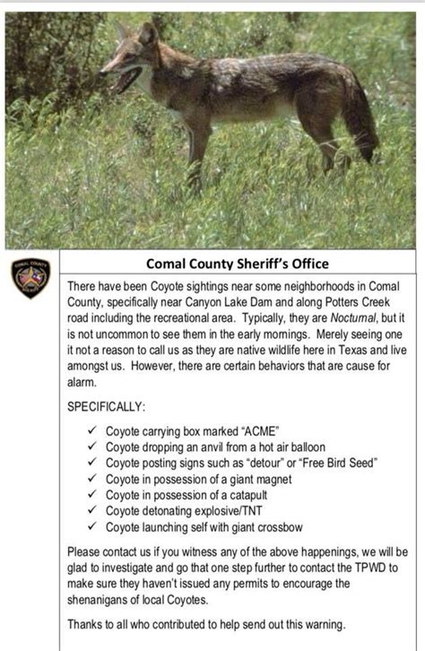 texas sheriffs office posts hilarious psa  coyotes