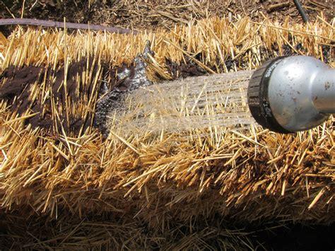 straw bale gardening fertilizer straw bale garden part iii adding fertilizer my reader