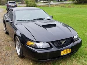 2001 Ford Mustang Bullitt for sale #2424158 - Hemmings Motor News
