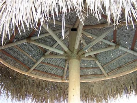 how to build a palapa 9 ft palapa patio umbrella images