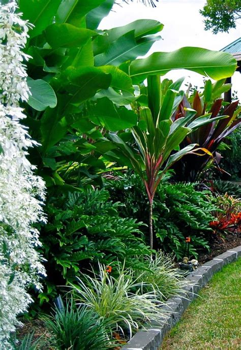 1000+ Ideas About Tropical Landscaping On Pinterest