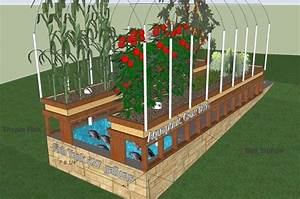 17  Images About Aquaponics Gardening On Pinterest