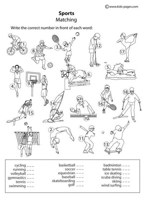 79 best images about pe worksheets on