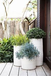 25 best garden pots ideas on pinterest potted plants With amenager un jardin rectangulaire 0 how to decorate your patio with plants