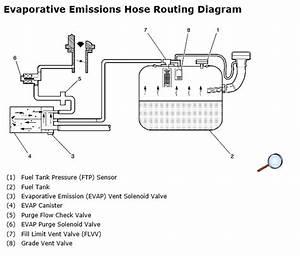 Evap System Diagram