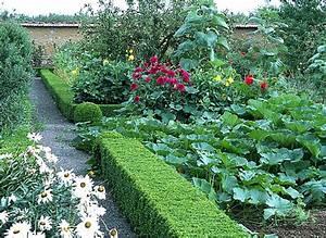 Quand Planter Lavande Dans Jardin : la plantation du buis en brodure ~ Dode.kayakingforconservation.com Idées de Décoration