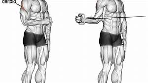 Cable External Shoulder Rotation Exercise