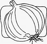 Coloring Onion Vegetables Onion2 Preschool Kindergarten Worksheets Crafts Toddler sketch template