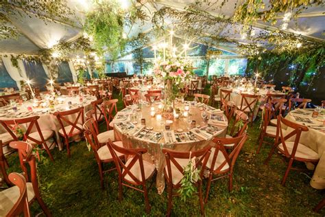 enchanted forest theme party decorations shelly lighting