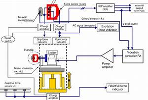 Schematic Signal Flow Diagram Of The Single