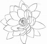 Lotus Flower Tattoo Outline Designs Tattoos Drawing Stencil Cool Stencils Simple Flash Metacharis Deviantart Drawings Petals Water Purple Photobucket Amazing sketch template