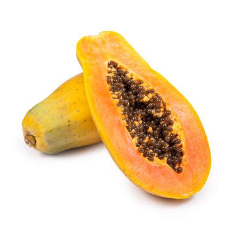 Chula Tainung Papayas - TSI TROPICALS