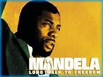 Mandela: Long Walk to Freedom (2013) - Movie Review / Film ...
