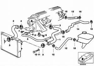 Manicotto Acqua Radiatore Inferiore Bmw E39 525 Tds Dal 95