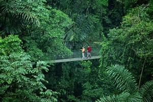 Costa Rica Natural Paradise | Cruise Like a VIP