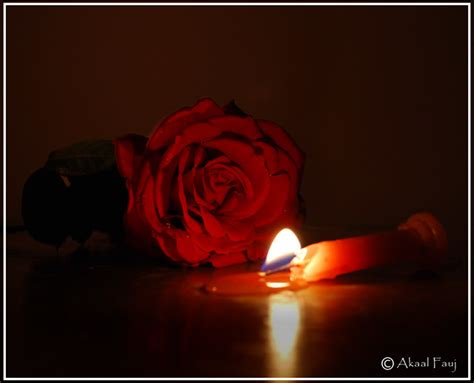 Candele Rosa by And Candle Flickr Photo