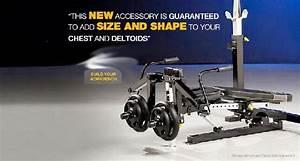 powertec fitness - free weijghts - hammer strength - plate ...