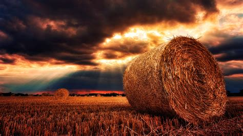 Free Hay Bale 4k Chromebook Wallpaper Ready For Download
