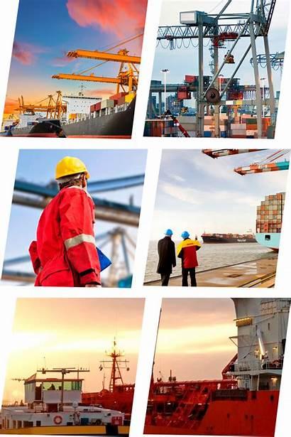 Transporte Mercancias Trincaje Embalaje Internacional