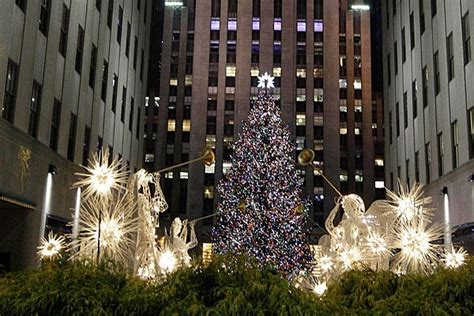 New York Christmas Tree Animebgx