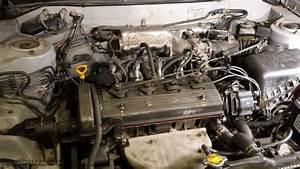 93 V6 4 3 Engine Diagram