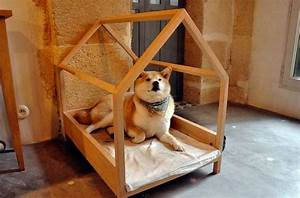 Simple structure dog houses diy dog house for Easy diy dog house