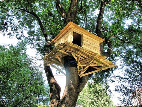 sull albero italia costruiamo tutti insieme una casa sull albero manoxmano