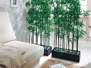 Große übertöpfe Für Zimmerpflanzen : zimmerpflanzen online kaufen bei obi ~ Bigdaddyawards.com Haus und Dekorationen