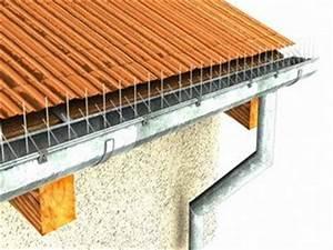 Spatzen Nisten Unter Dachziegeln : neu 5 m f r dachrinne rinne edelstahl kleinsvogelabwehr ~ Lizthompson.info Haus und Dekorationen