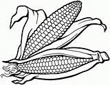 Corn Coloring Pages Field Drawing Printable Maize Plant Cornucopia Harvest Clipart Colouring Sheets Milkshake Strawberry Clip Sweet Supercoloring Stalks Fields sketch template