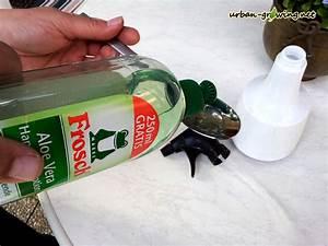 Blattläuse Gurken Bekämpfen : l use bek mpfen blattl use bek mpfen mit sp ligartentipps ~ Lizthompson.info Haus und Dekorationen